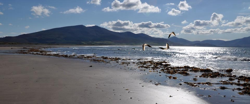 Long Distance Walks in Brandon Bay Beach Co Kerry in Ireland