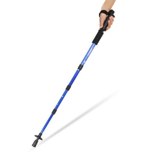 Mountain Walking Stick